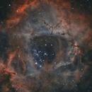 NGC 2244 - Rosette Nebula Bicolor,                                Mike Hislope