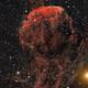 IC 443,                                Lorenzo Siciliano
