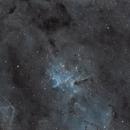IC 1805 Core  of the Heart Nebula in SHO,                                Richard H