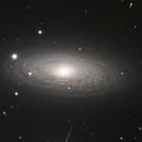 NGC2841,                                Romain Chauvet