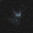 Thor's helmet (NGC 2359),                                echosud
