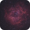 Nebulosa Roseta NGC 2237,                                Chesco Carbonell
