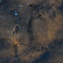 IC 1396A - Elephant's Trunk in Ha and OII,                                John Hosen