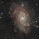M33 in LrgbHa,                                Michele Vonci