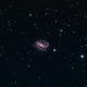 NGC 7479,                                Boyan Kassabov