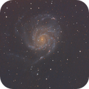 M101 - Galaxia espiral Pinwheel (4º Procesado),                                Luis Martinez