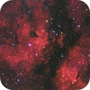 IC1318 / LDN889 - the Butterfly nebula,                                Gianni Cerrato