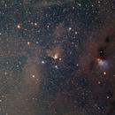 B214 (Barnard Plate #5),                                Jeff Ball