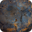 "IC 1396 - Elephant's Trunk Nebula (First light with Celestron RASA 8""),                                Yannick Akar"