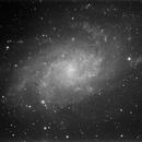 M33 Luminance,                                Mauro Narduzzi