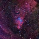 NGC 2264,                                CrestwoodSky