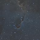 IC 1396 - Elphants Trunk Nebula,                                Sean van Drogen