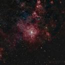 NGC2070 - Tarantula Nebula in Doradus,                                Fernando