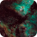 Keyhole Nebula,                                Wayne Stronach