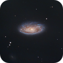 M88 Galaxy,                                Shannon Calvert