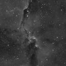 WIP IC1396,                                Florian APPERT
