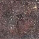 Elephant Trunk Nebula,                                PapaMcEuin