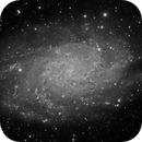 M33 Triangulum Galaxy, Details from a Small Refractor,                                Dan Bartlett