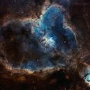 IC1805 (Heart Nebula) SHO narrowband,                                HaSeSky