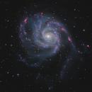 M101 – Pinwheel Galaxy – Apr 2020 v1,                                Martin Junius
