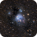 NGC 7129,                                Warren A. Keller