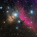 Horsehead Nebula  IC434,                                Dave59