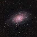 M33 ,                                Craig Prost