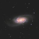NGC 2905 - ZWO ASI2600MC-Pro,                                Andrew Burwell