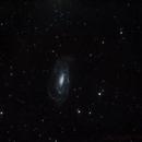 NGC 5033 ,                                John Leader