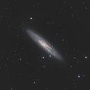 NGC 253, using reduced data provided by i Telescope.,                                Harrington Beach Imagers Group