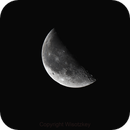 Moon,                                edomtset