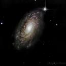 Messier 63: Sunflower Galaxy,                                Robert St John