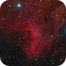 IC 5067,                                Mike Miller