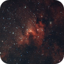 The Cave Nebula,                                James
