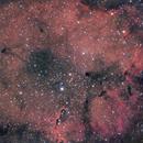 Nébuleuse de la Trompe d'Eléphant - IC 1396,                                Alexandre Piquelin
