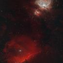 Open Wide: Orion Nebula (M42) and Horsehead Nebula,                                Chris Hunt