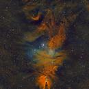 NGC 2264 - Cone Nebula & Christmas Tree Cluster,                                Kurt Zeppetello