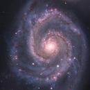 Whirlpool Galaxy - M51,                                David Schlaudt