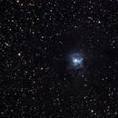 Iris Nebula,                                Gustavo Sánchez