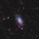 NGC2403 in LRGB+Ha - 2020,                                Peter Folkesson