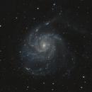 M101,                                Tom914