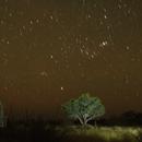 Rising Orion in Namibia (Tivoli Astrofarm),                                Thorsten