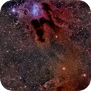 """vdB 31 """"a lonely little petunia in an onion patch"""" of dark nebulae,                                Alex Woronow"""