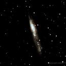 NGC55,                                Jesús Piñeiro V.