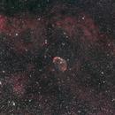 NGC6888,                                Rino