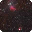 The Spider (IC417 ) & The Fly (NGC 1931),                                Barry Wilson