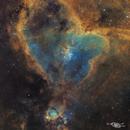 Heart & Fish Head Nebulae,                                David Schlaudt