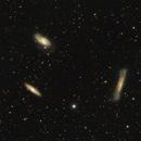 The Leo Triplet M65, M66, NGC 3628,                                JohnAdastra