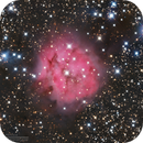 IC5146 Cocoon Nebula in (R+HA)GB,                                Kayron Mercieca