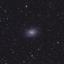 NGC 6744,                                Christian Vial Arce